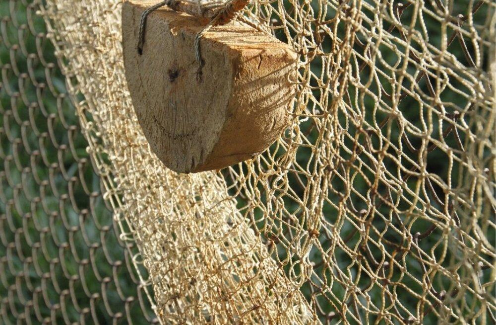Ruhnu volikogu esimeest ähvardab kalapüügi eest rahatrahv