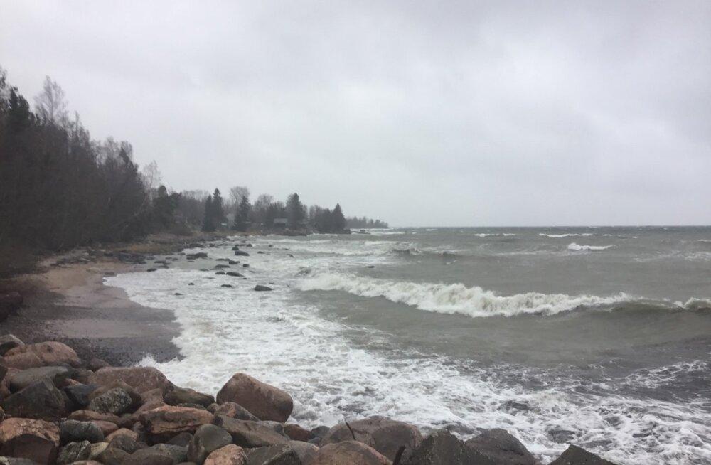OTSEPILT PÕHJARANNIKULT | Tugev tuul tõstab laineid üha kõrgemaks