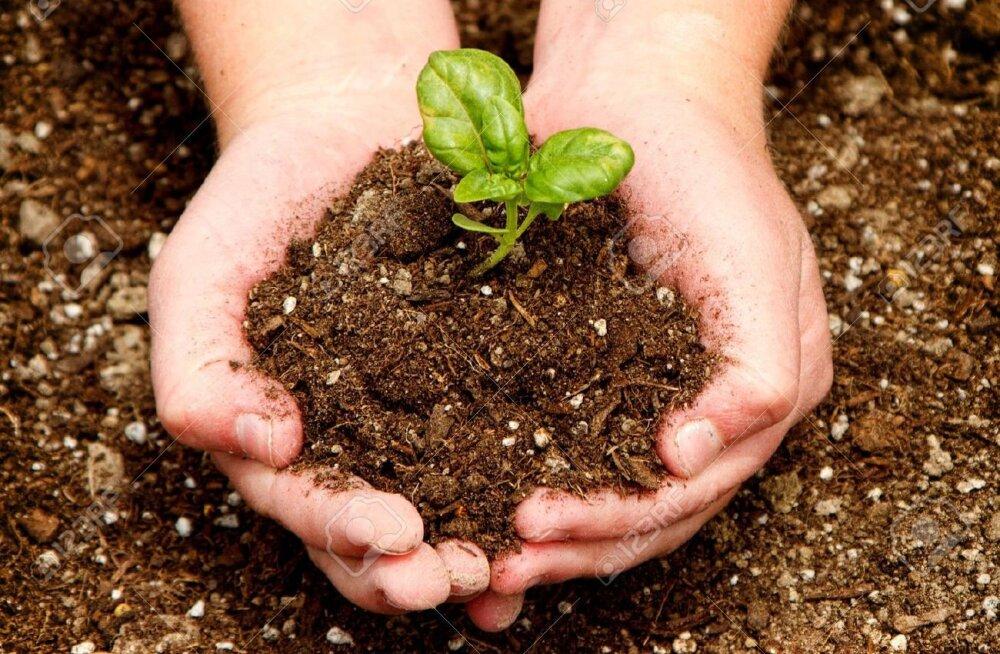 Ühe päeva jooksul hävineb maailmas kahe Tallinna pindala jagu mulda (aga kus me tulevikus toitu kasvatame?)