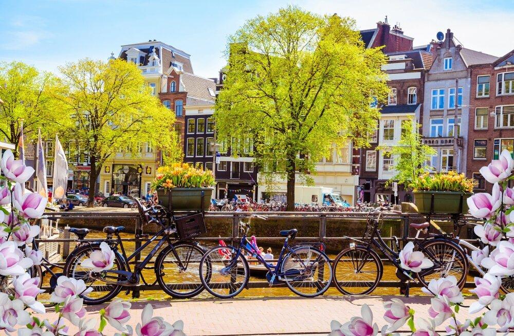 20 городов, где лучше всего встречать весну
