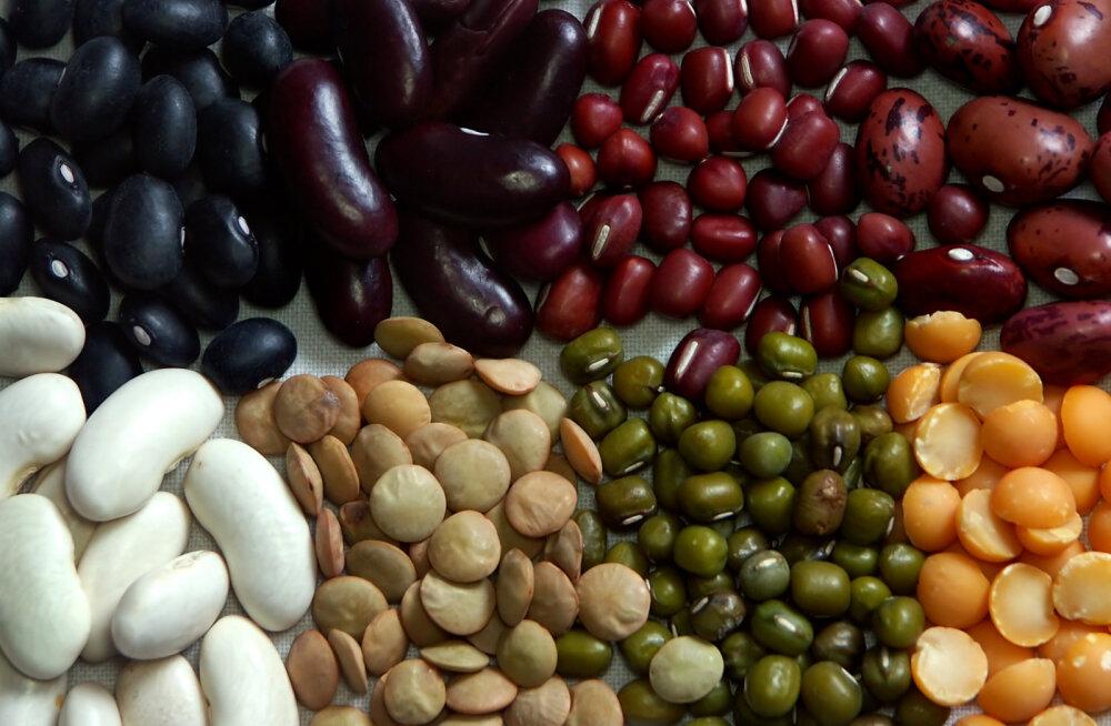 Vegan.ee avalik kiri: kas Eestis keelustatakse kaunviljatoidud?