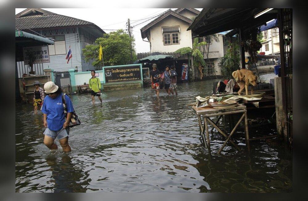 Taifuunid ei jõua kunagi meieni