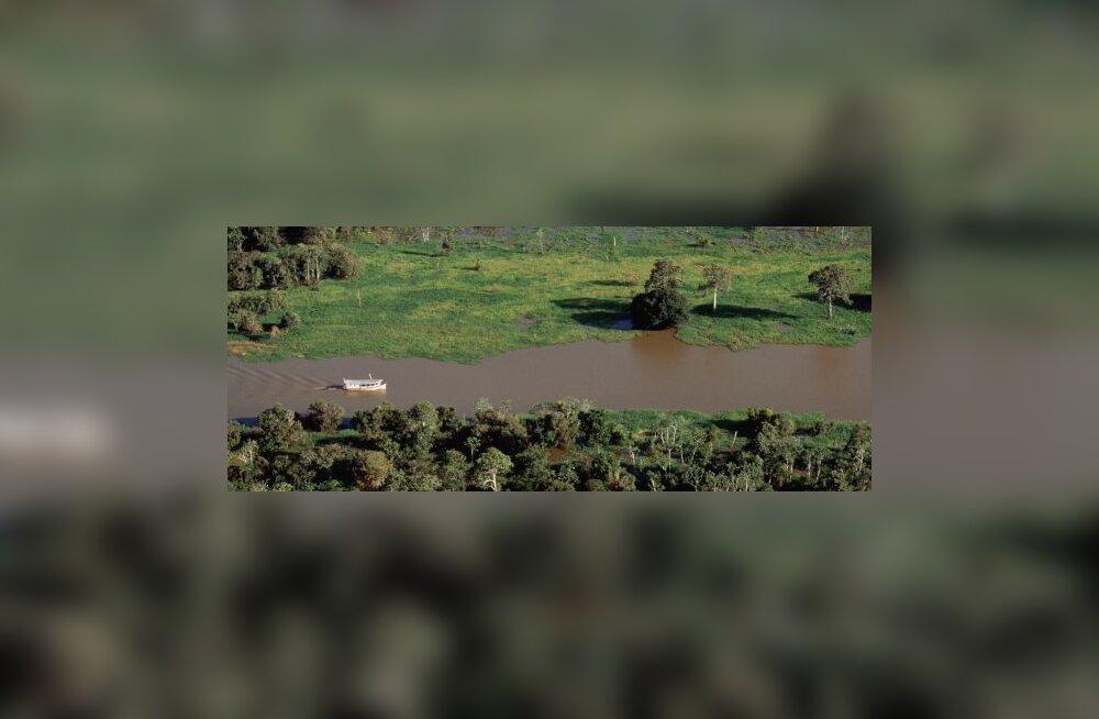 Amazonase jõe vanus selgunud - 11 miljonit aastat