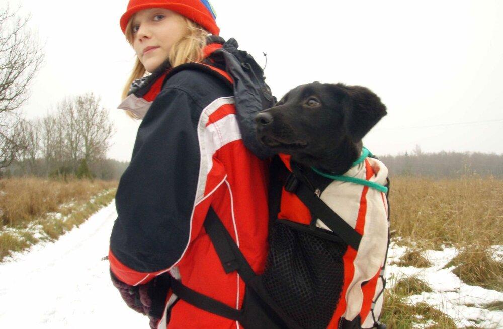 INTERVJUU | Kes oli EV100 filmis mänginud koer Lola?