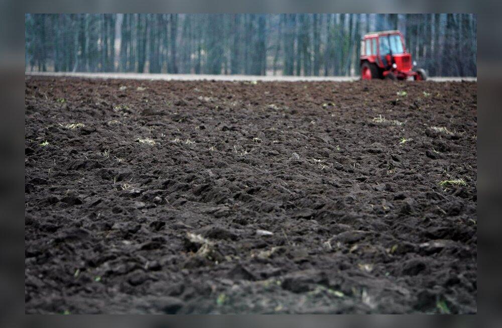 Белорус похитил с поля 18 тонн куриного помета