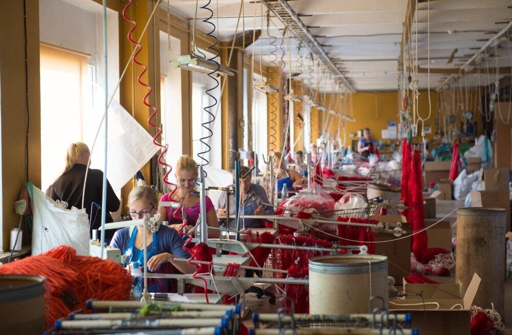 Сааремааский завод ждет работящих беженцев — местные хотят получать зарплату и ничего не делать