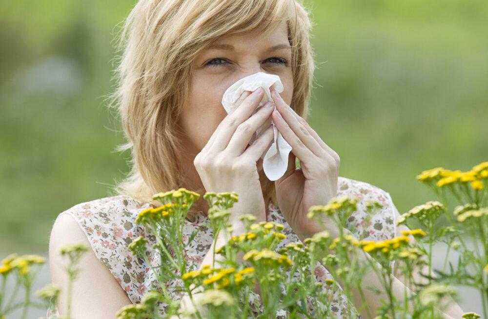 Vesine nina ja sügelevad silmad — kuidas saada aru, et tegemist on allergiaga?