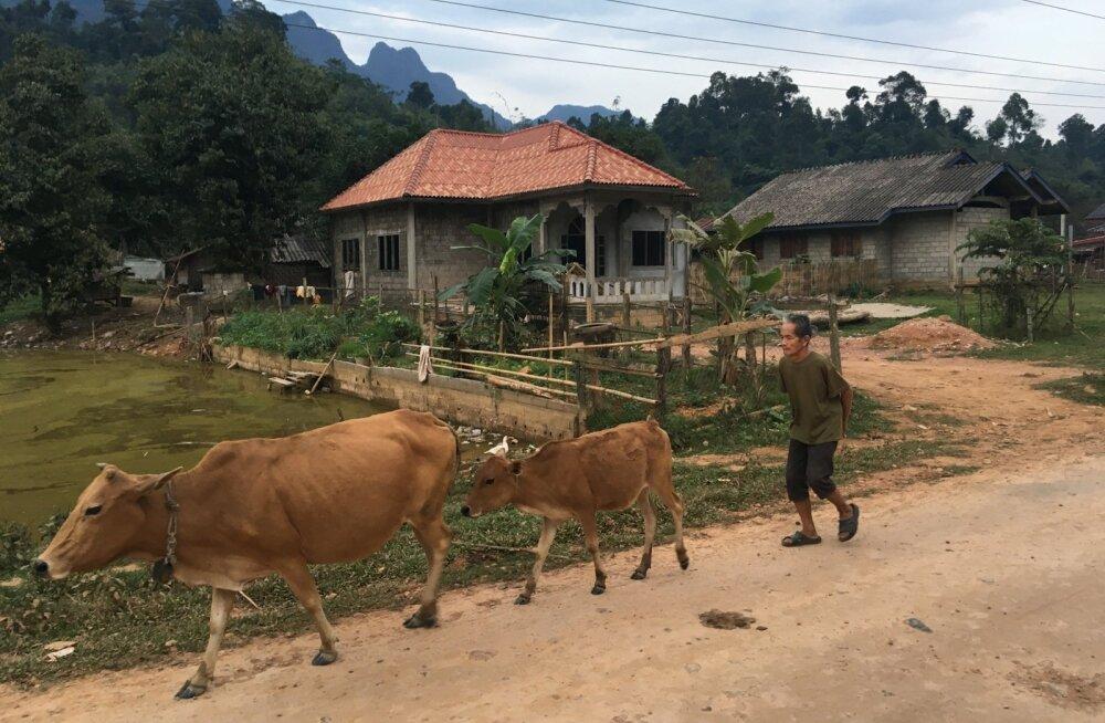 Reisikiri Laosest