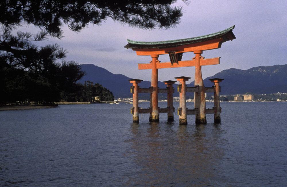 Популярный у путешественников остров в Японии вводит туристический налог