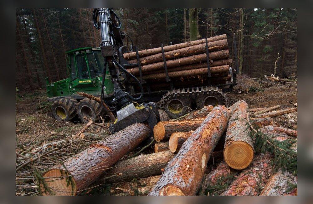 metsatööstus, mets, puit,