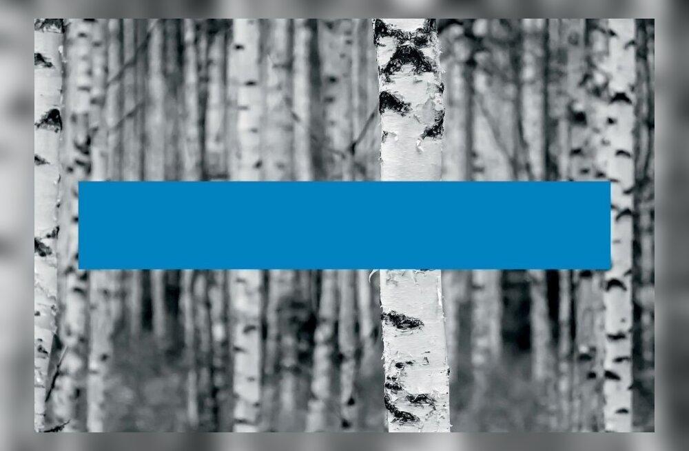 Soome uus identiteet