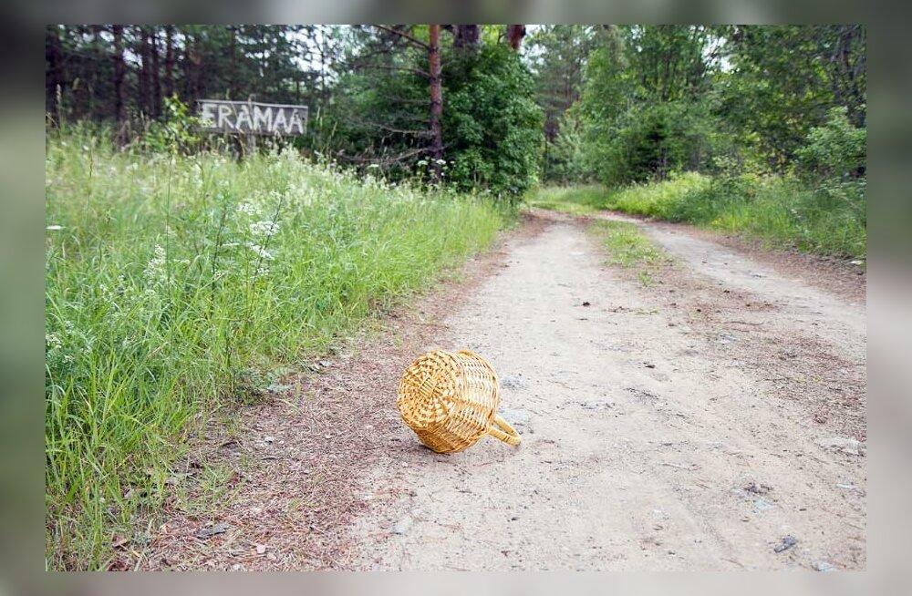 Что надо знать, если во время сбора грибов и ягод вы забрели в частный лес