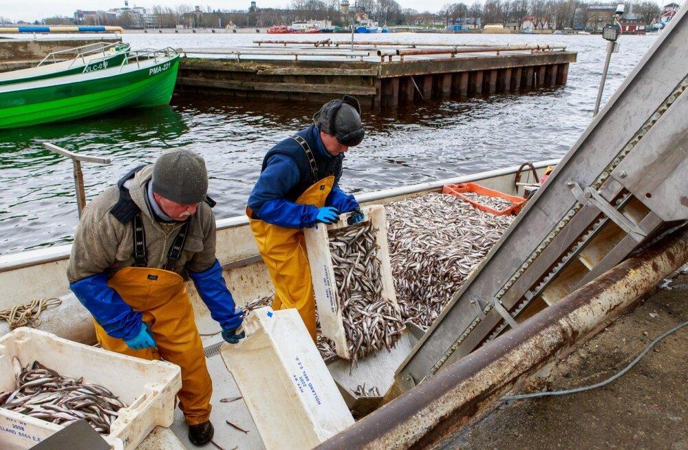 Euroopa kalanduse oma X-tee aitab illegaalse püügi vastu
