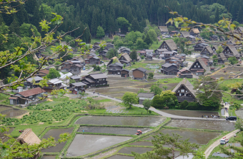 Pensionipõlv Aasias? Jaapani valitsus hakkab tasuta maju jagama