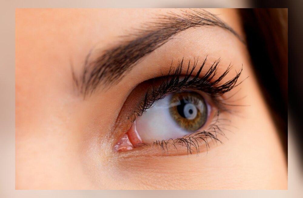 Что нужно знать о коньюнктивите и как уберечь свои глаза