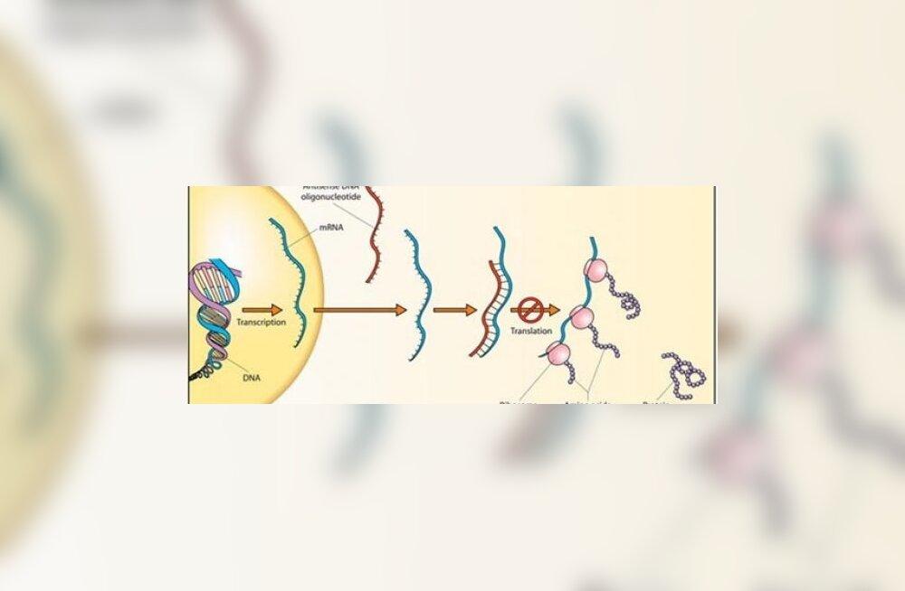 RNA võis Maal tekkida arvatust kergemini
