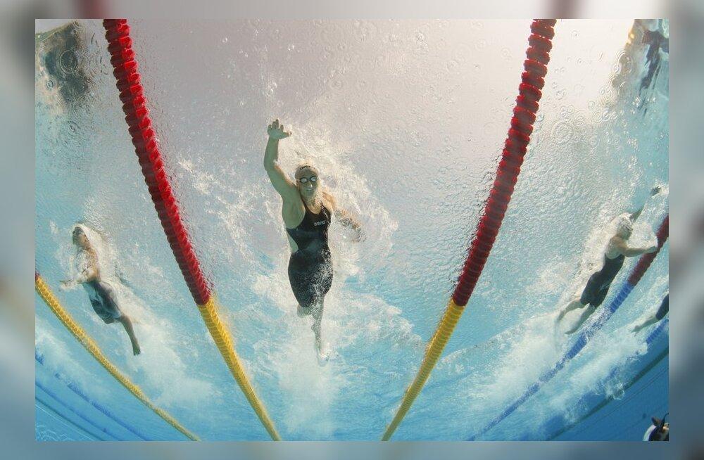 Triin Aljand, ujumine, krool