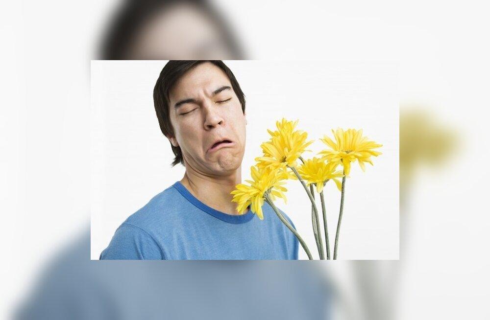 Lõhnataju mõjutab molekulide suuruse kõrval nende võnkesagedus me sõõrmeis