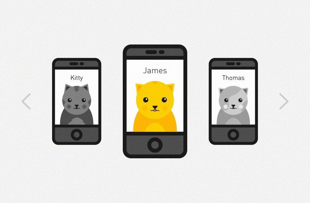 Eestlased lõid kassidele mõeldud Tinderi