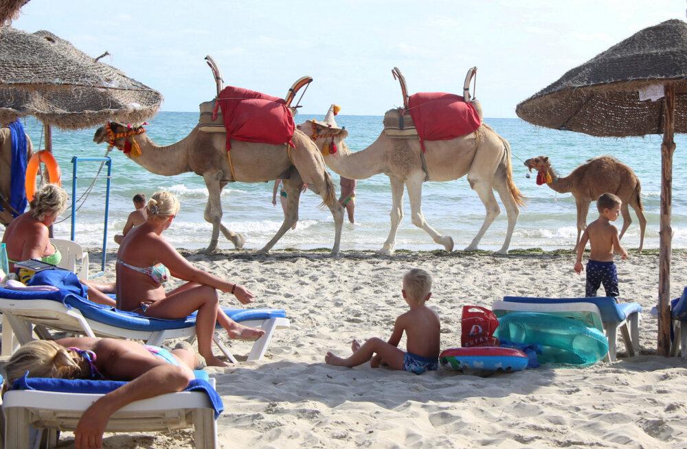 Испорченный отпуск: туристы забронировали отдых в Тунисе, а турфирма отменила рейс. Что делать и кто виноват?