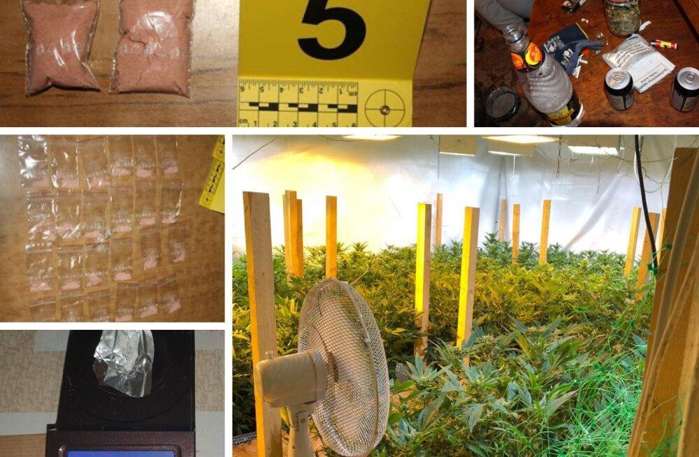 ФОТО | 6,7 кг наркотических веществ, 119 таблеток ЛСД и 9000 евро. Наркополиция Идаской префектуры установила личный рекорд