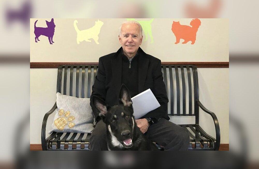 Tere, Major! Valgesse Majja kolib esmakordselt varjupaigast päästetud koer