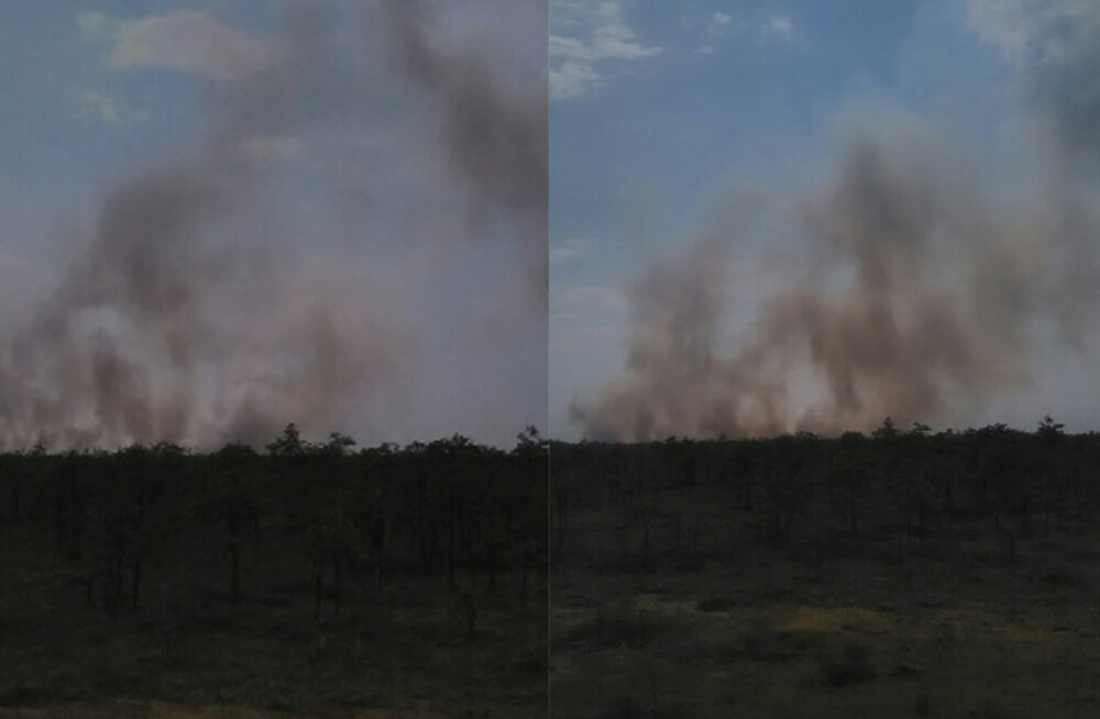 FOTOD   Alam-Pedja looduskaitsealal põleb turbapinnas, lähedal asub ürgmets