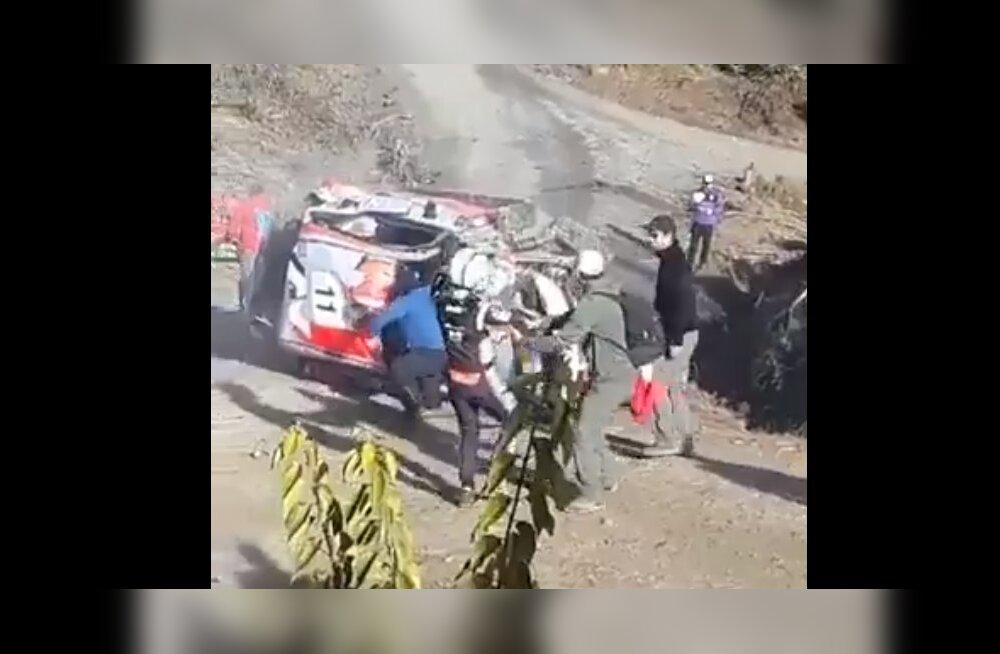 VIDEO | Thierry Neuville ja kaardilugeja Gilsoul suutsid suure avarii järel autost väljudes vaevu püsti seista