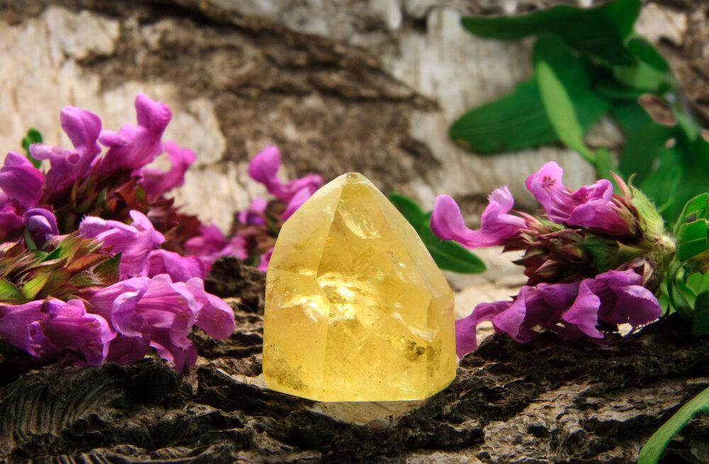 Missugune kristall toob õnne ja edu igale looma-aasta märgile