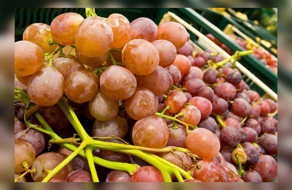 10 põhjust ampsata rohkem viinamarju