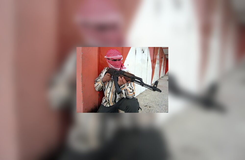 Iraak, al-qaida, terrorist, siss, islam, võitleja