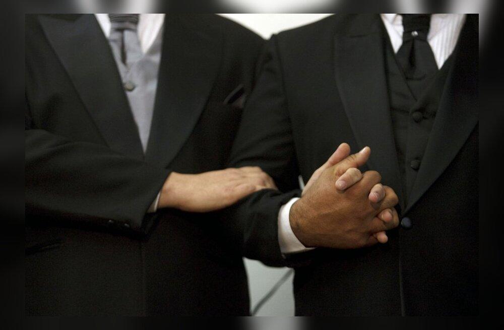 Kirikute nõukogu: homoseksuaalne eluviis on patt mis tahes vormis
