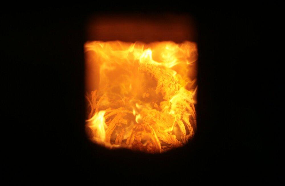 Kas teate, millises suurriigis tuhastatakse peaaegu kõik surnud?