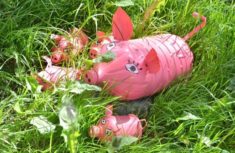 Hüva nõu: teeme ise kasahhide peletamiseks plastpudelitest seapere!