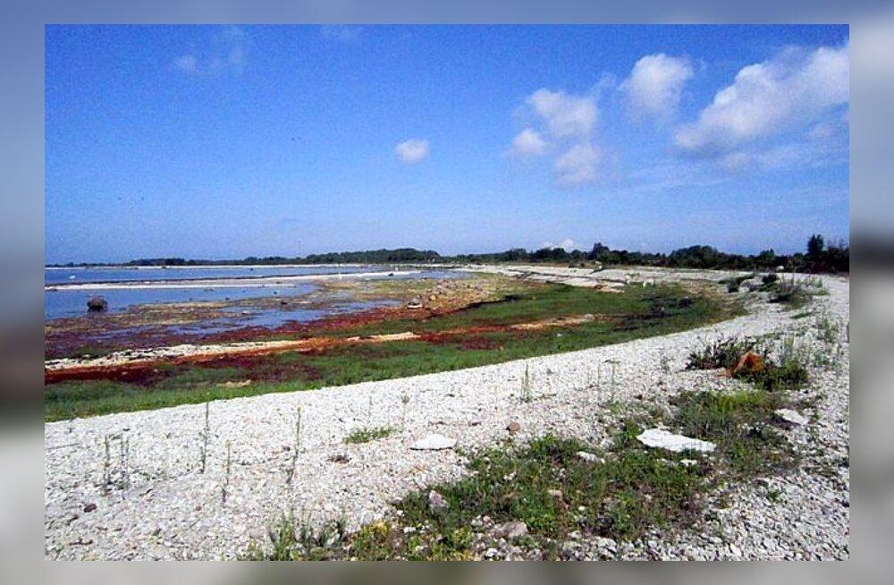 ФОТО и ВИДЕО читателя Delfi: Манящий Осмуссаар — почти безлюдный остров с древней историей