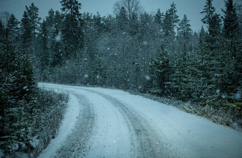 Kohati paistavad teed üsna talvised, kuid Ott Tänaku sõnul on see petlik. Jäine kiht on liiga õhuke.