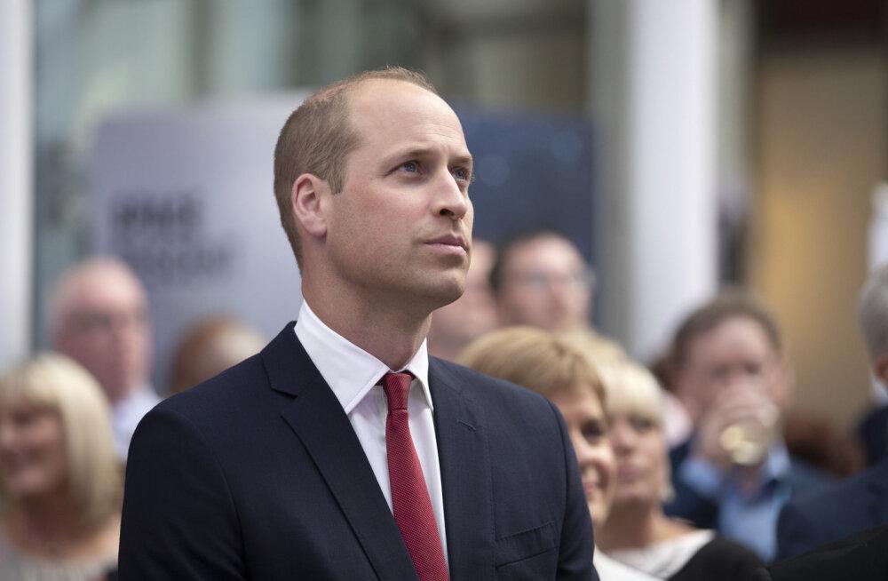 """Kokkusattumus või mitte? Prints Williamil on lauba peal """"Harry Potteri arm"""", mille ta sai täiesti uskumatul moel"""