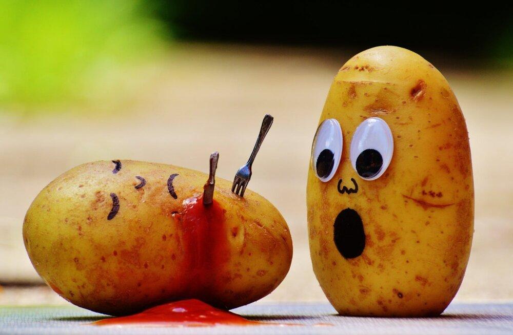 Paned poest tulles kartulid ja tomatid külmkappi? Valesti teed!