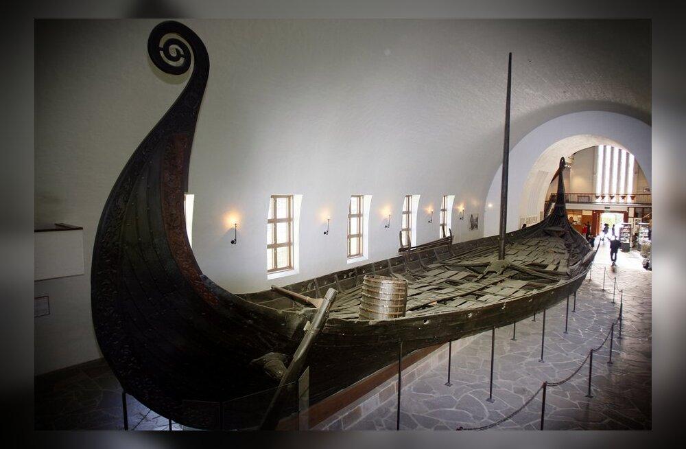 Salme muinaslaev on arvatavalt 50-100 aastat vanem kui Norrast leitud Osebergi viikingilaev (fotol). Foto Heiko Junge