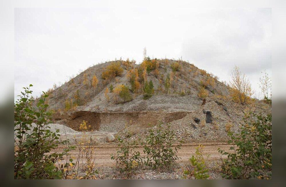 Население Кохтла-Ярве в ужасе: новый завод может накрыть город пылью и вонью