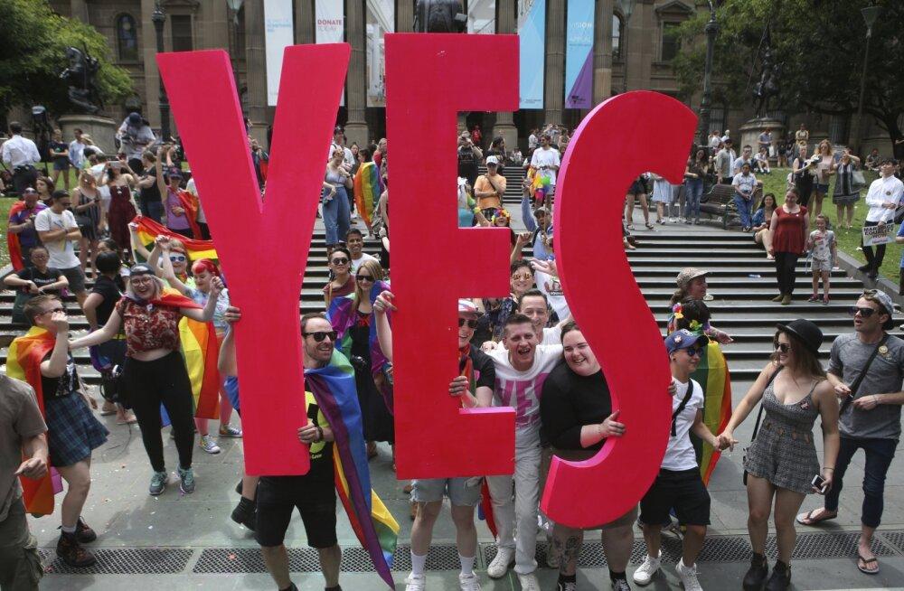 Seitse huvitavat fakti samasooliste abielu kohta