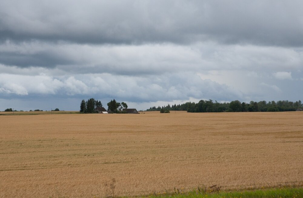 Eesti iduettevõtte loodud põllumajandustarkvara hakatakse kasutama veel viies Euroopa riigis