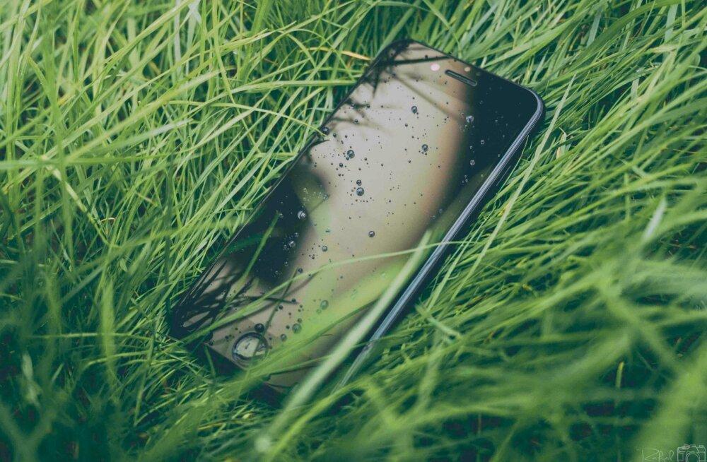 Ekspert hoiatab: Viis asja, mida mitte teha, kui telefon märjaks saab