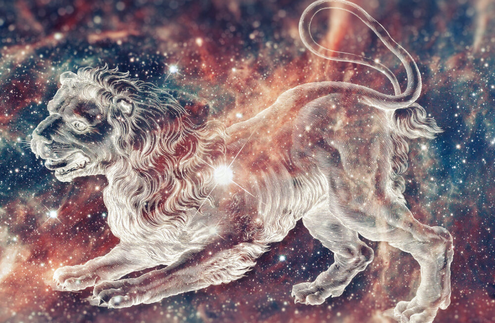 10 põhjust, miks rõõmustada, kui sinu kallim on Lõvi tähemärgi esindaja
