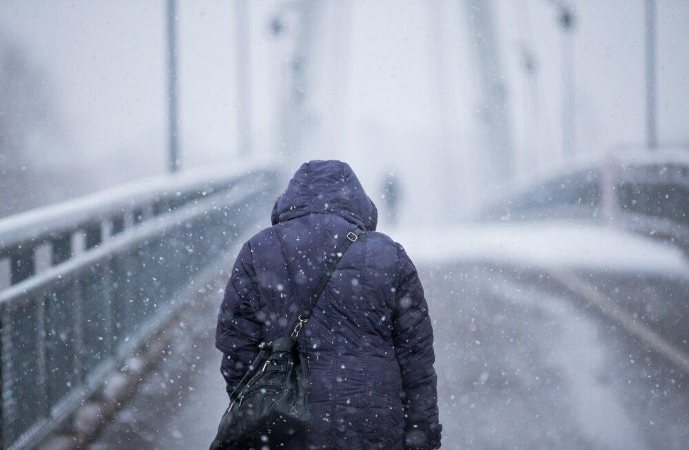 Ilmaprognoos: pühapäeval hakkab lund sadama, oodata miinuskraade
