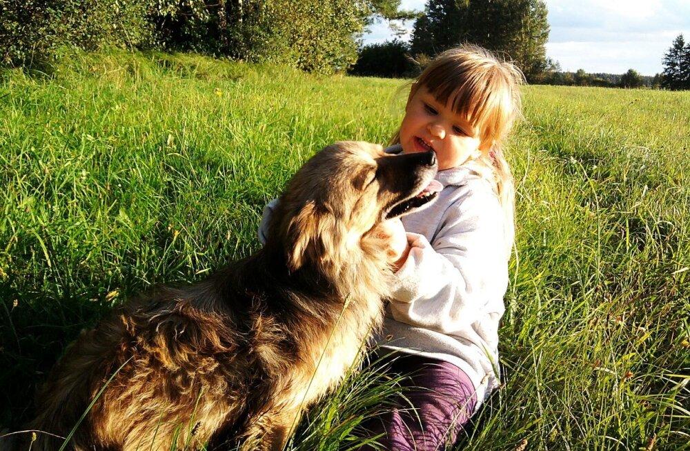 Kui laps tahab koera: milline lemmik sobib lastega peresse?