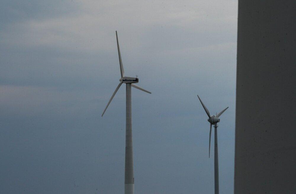 Tuulikud. Foto on illustratiivne.