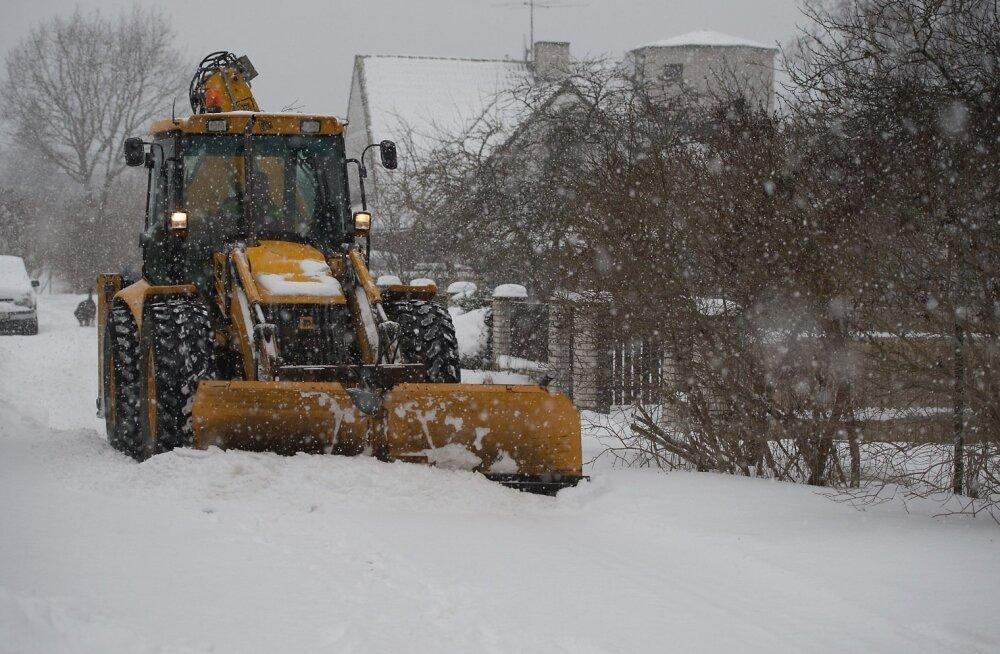 Lumi Viimsis, Mähel