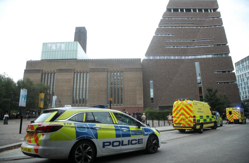 В Лондоне подросток выхватил сына у женщины и сбросил с десятого этажа