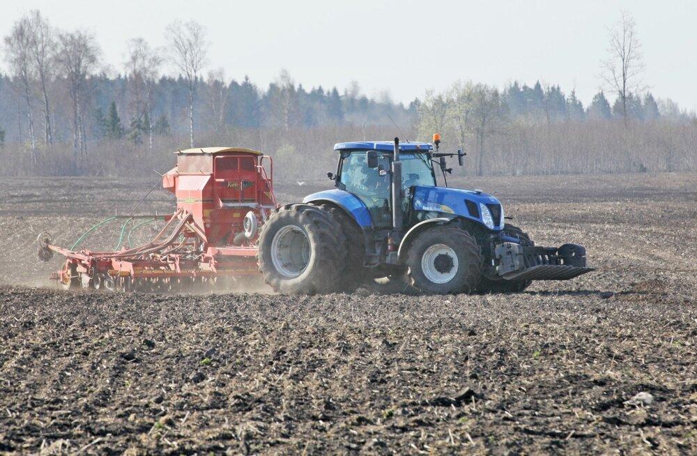 Külm kevad paneb põllumehed keerulisse olukorda